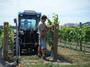 大沢ワインズ 2008年02月04日畑の様子