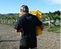大沢ワインズ リザーブワイン用ぶどうの収穫