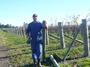 大沢ワインズ 2011年06月07日畑の様子