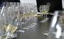 Tasting of Organic Wine 2014 Vintage